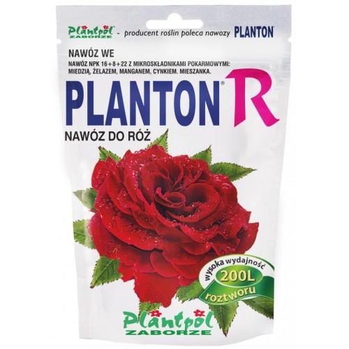 Planton R
